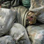 Передвижной крематорий для животных в Украине