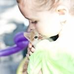 Акция, посвященная дню бездомных животных