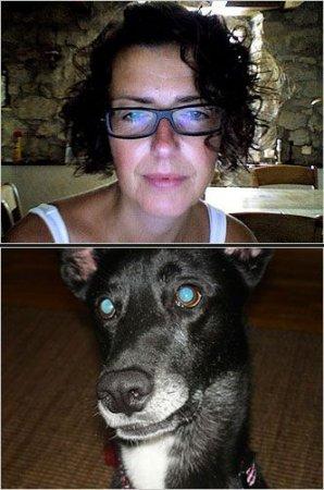 Собаки так похожи на своих хозяев
